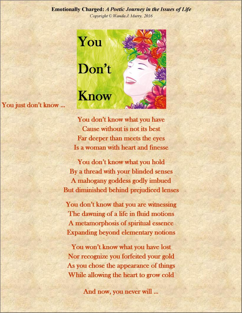 Poem-You Dont Know (Insert) 051217